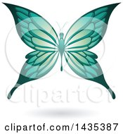 Clipart Of A Flying Turquoise Butterfly And Shadow Royalty Free Vector Illustration by cidepix