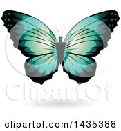 Clipart Of A Turquoise Butterfly With A Shadow Royalty Free Vector Illustration by cidepix