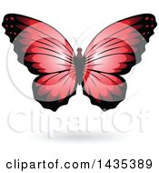 Clipart Of A Red Butterfly With A Shadow Royalty Free Vector Illustration by cidepix