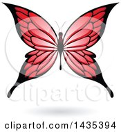 Red Butterfly With A Shadow