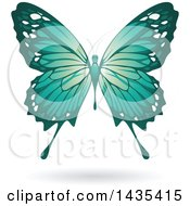 Clipart Of A Flying Turquoise Butterfly And Shadow Royalty Free Vector Illustration
