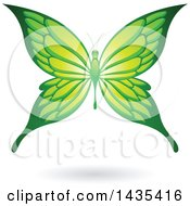 Clipart Of A Flying Green Butterfly And Shadow Royalty Free Vector Illustration