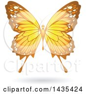 Clipart Of A Flying Yellow Butterfly And Shadow Royalty Free Vector Illustration
