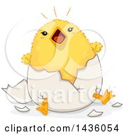 Poster, Art Print Of Noisy Chick Hatching From An Egg