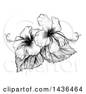 Vintage Black And White Engraved Or Woodcut Hibiscus Flower Design