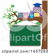 Clipart Of A Professor Owl On A Branch With Students Over A Chalk Board Royalty Free Vector Illustration by visekart