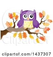 Purple Owl On An Autumn Oak Branch
