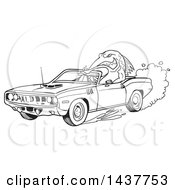 Clipart Of A Black And White Lineart Tough Fish Driving A 1971 Hemi Plymouth Barracuda Convertible Muscle Car Royalty Free Vector Illustration by LaffToon