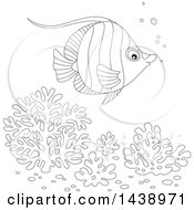 Black And White Lineart Angelfish Over Corals