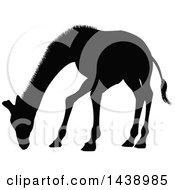 Black Silhouetted Giraffe Grazing