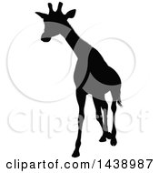 Clipart Of A Black Silhouetted Giraffe Walking Royalty Free Vector Illustration by AtStockIllustration