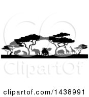 Clipart Of A Safari Scene Of Black Silhouetted African Animals Giraffes Rhinos Elephants And Lions Under Acacia Trees Royalty Free Vector Illustration by AtStockIllustration