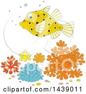 Clipart Of A Cartoon Puffer Blow Fish Over Corals Royalty Free Vector Illustration