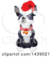 Cute Boston Terrier Dog Wearing A Christmas Santa Hat And Singing