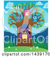 Clipart Of A Professor Owl And Students In A Tree On A Spring Day Royalty Free Vector Illustration
