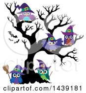 Clipart Of A Group Of Witch Owls In A Bare Tree Royalty Free Vector Illustration