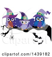 Clipart Of A Group Of Witch Owls On A Tree Branch Royalty Free Vector Illustration
