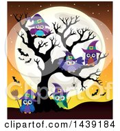 Clipart Of A Group Of Witch Owls In A Bare Tree Against A Full Moon Royalty Free Vector Illustration