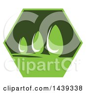 Go Green Or Landscaping Design