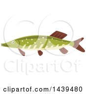 Clipart Of A Pike Fish Royalty Free Vector Illustration