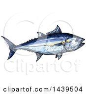 Sketched And Colored Tuna Fish