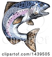 Clipart Of A Sketched And Colored Jumping Salmon Fish Royalty Free Vector Illustration