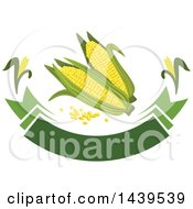 Clipart Of A Banner With Corn And Kernels Royalty Free Vector Illustration