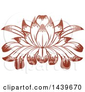 Clipart Of A Beautiful Brown Water Lily Lotus Flower Royalty Free Vector Illustration by AtStockIllustration