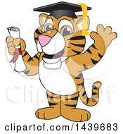 Clipart Of A Tiger Cub School Mascot Character Graduate Royalty Free Vector Illustration