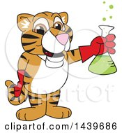 Clipart Of A Tiger Cub School Mascot Character Holding A Science Flask Royalty Free Vector Illustration