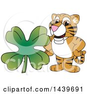 Clipart Of A Tiger Cub School Mascot Character With A St Patricks Day Clover Royalty Free Vector Illustration