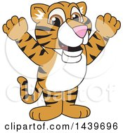 Clipart Of A Tiger Cub School Mascot Character Cheering Royalty Free Vector Illustration