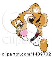 Clipart Of A Tiger Cub School Mascot Character Looking Around A Sign Royalty Free Vector Illustration