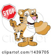 Clipart Of A Tiger Cub School Mascot Character Holding A Stop Sign Royalty Free Vector Illustration