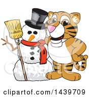 Clipart Of A Tiger Cub School Mascot Character With A Snowman Royalty Free Vector Illustration
