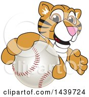 Clipart Of A Tiger Cub School Mascot Character Grabbing A Baseball Royalty Free Vector Illustration by Toons4Biz