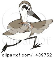 Clipart Of A Sandpiper Bird School Mascot Character Playing Football Royalty Free Vector Illustration by Toons4Biz