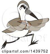 Sandpiper Bird School Mascot Character Playing Football