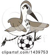 Clipart Of A Sandpiper Bird School Mascot Character Playing Soccer Royalty Free Vector Illustration by Toons4Biz