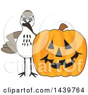 Clipart Of A Sandpiper Bird School Mascot Character With A Halloween Pumpkin Royalty Free Vector Illustration by Toons4Biz