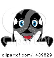 Clipart Of A Killer Whale Orca School Mascot Character Looking Over A Sign Royalty Free Vector Illustration by Toons4Biz