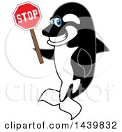 Killer Whale Orca School Mascot Character Holding A Stop Sign