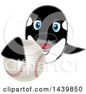Killer Whale Orca School Mascot Character Grabbing A Baseball