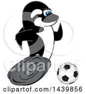 Killer Whale Orca School Mascot Character Playing Soccer