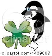 Clipart Of A Killer Whale Orca School Mascot Character With A St Patricks Day Clover Royalty Free Vector Illustration by Toons4Biz