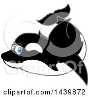 Clipart Of A Killer Whale Orca School Mascot Character Swimming Royalty Free Vector Illustration