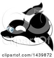 Killer Whale Orca School Mascot Character Swimming