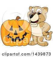 Lion Cub School Mascot Character With A Halloween Pumpkin