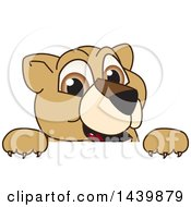 Clipart Of A Lion Cub School Mascot Character Looking Over A Sign Royalty Free Vector Illustration