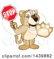 Lion Cub School Mascot Character Holding A Stop Sign